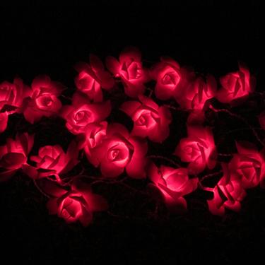 Lampu String Suria Rose